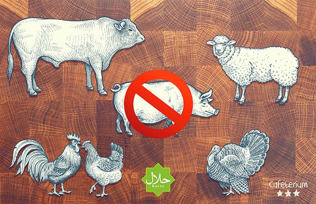 Helal/Halal und frisches Fleisch vom Rind, Schaf und Geflügel - ohne Schweinfleisch.